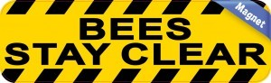 Bees Stay Clear Magnet