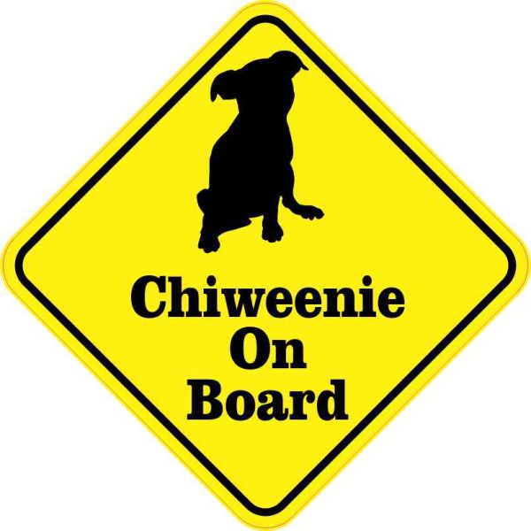 Chiweenie on board