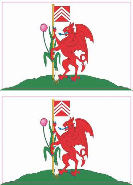 Cardiff Flag Magnets